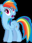 Rainbow Dash What The !?!?!