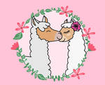 Llama Love by cammykze