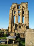 Tynemouth Abbey 14