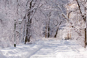 Warsaw Winter Wonderland 6 by SeaWhisper