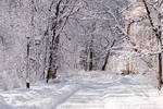 Warsaw Winter Wonderland 6