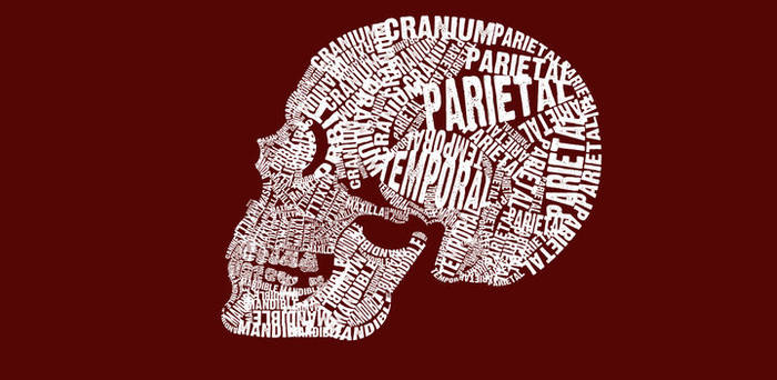 Typographical Skull