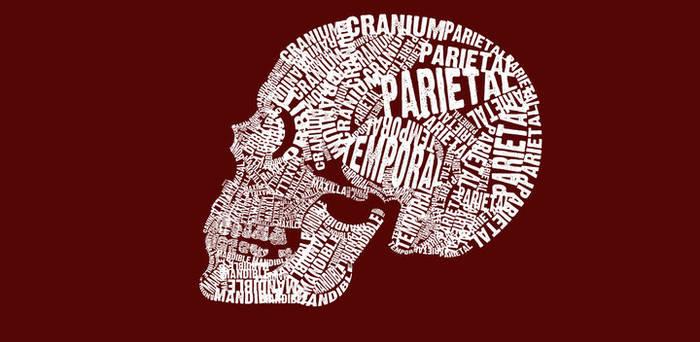 Typographical Skull