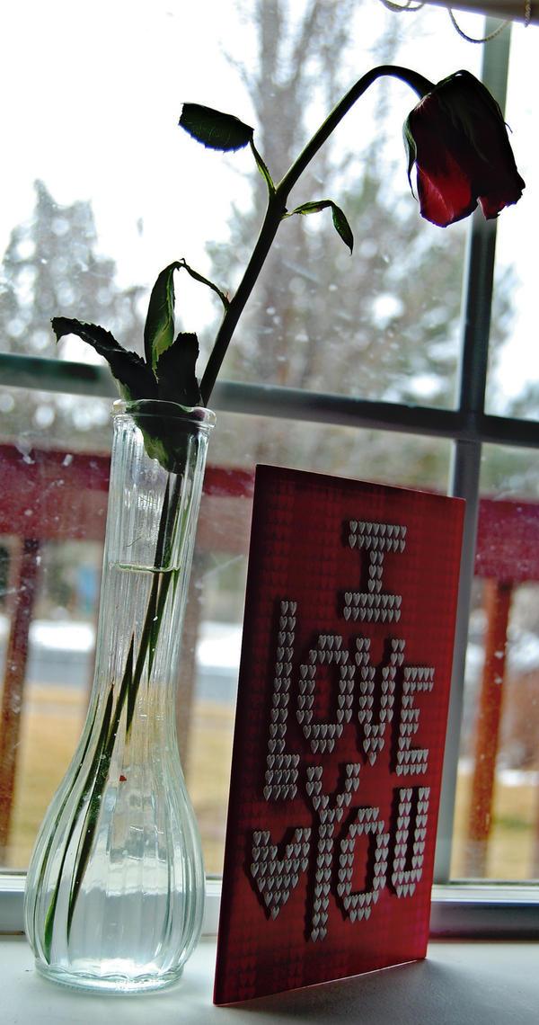 my valentine by AselinJane