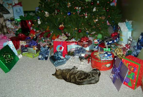 Guarding the Presents... by NoreLineas