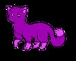 Cat Adoptable 4