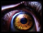 Eye -.