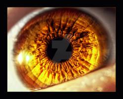 Golden Eye -.