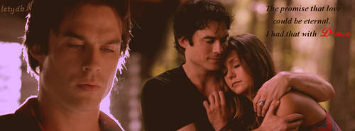 Delena 6x01 Facebook Cover by letydb