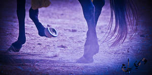 tent pegging timeline cover by Jiah-ali