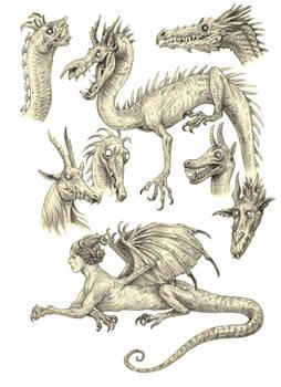 Dragony sketches