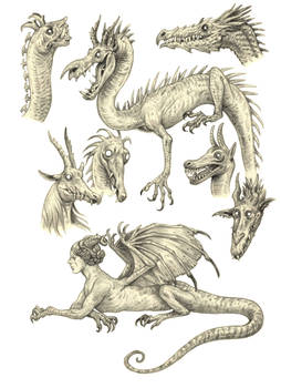 Dragony sketches