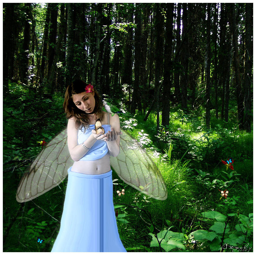 My sweet butterfly by Butterflyz
