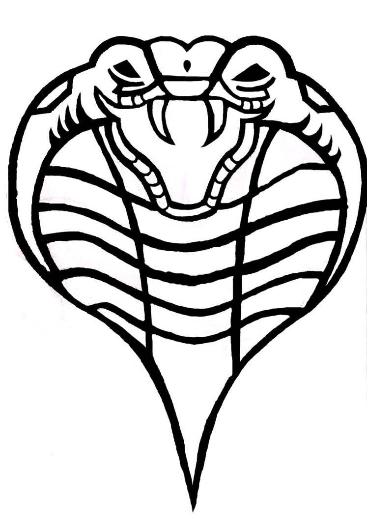 Drawn cobra cobra head  Pencil and in color drawn cobra