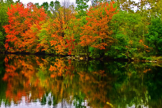 Fall's Reflection