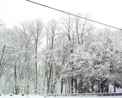 Winters' Blanket by darksilk