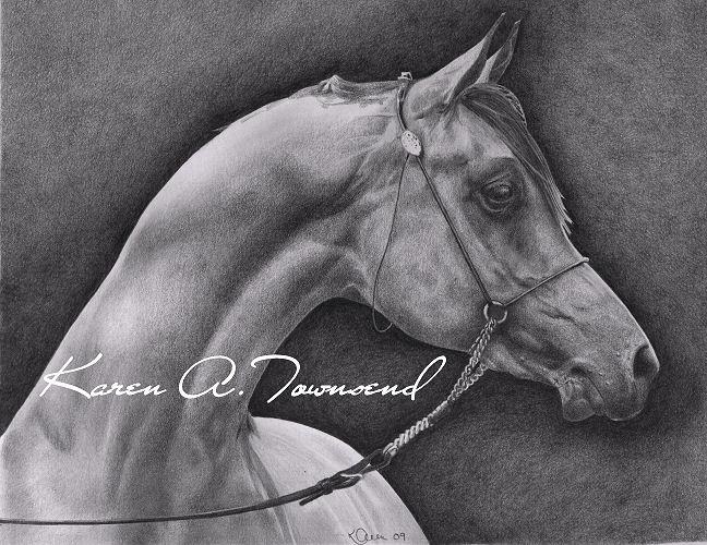 Arabian by Karentownsend