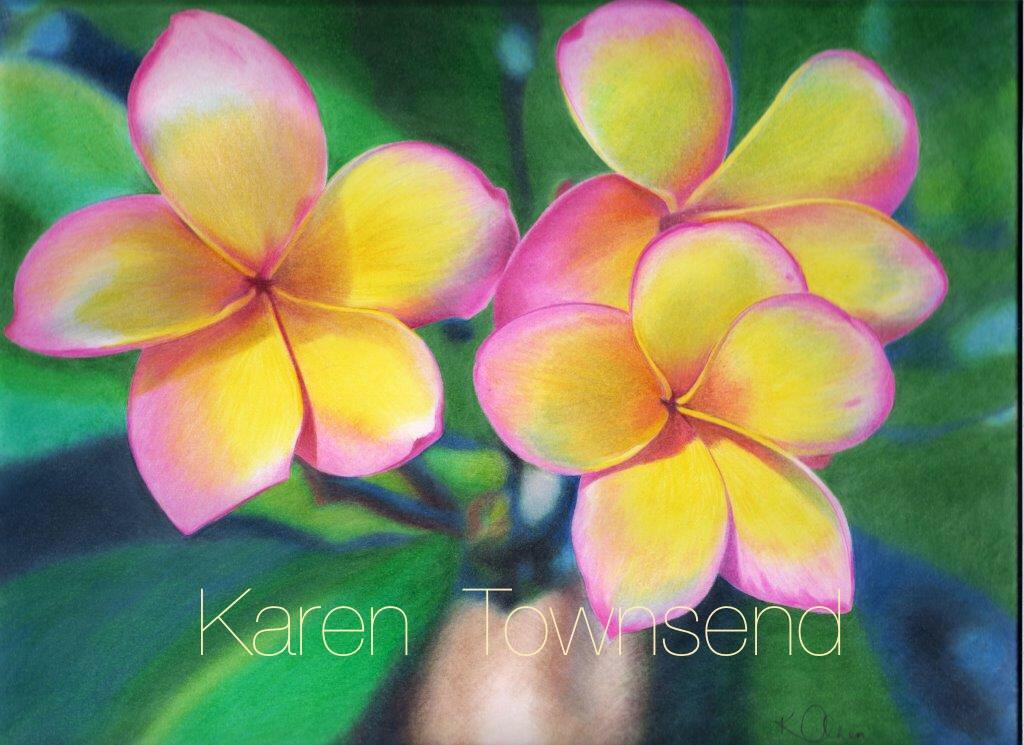Frangipani by Karentownsend
