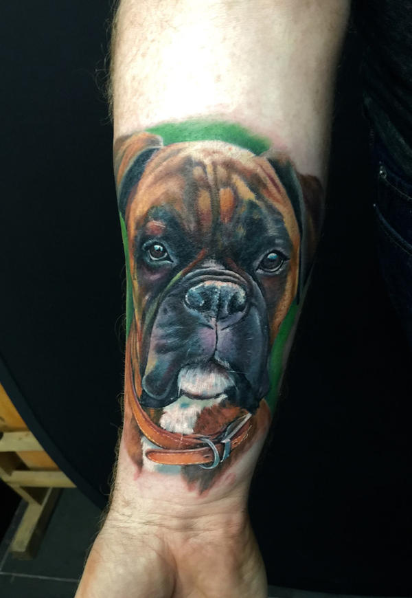 Boxer dog! by kayleytatts