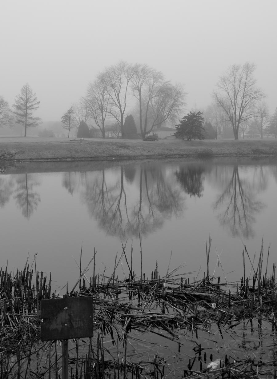 Reflections by ZenetianPandaz