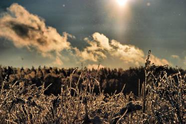 Winter silence by mr-asa