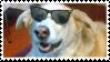 cool dog stamp