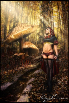 The Witch of Elrit