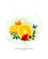 Orange by Slowracer