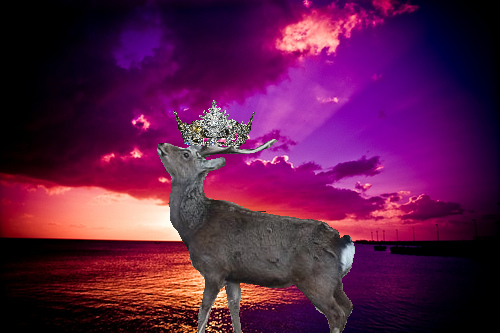 Queen Deer by STAG-KING