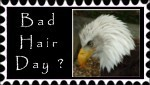 Bad Hair Day Stamp by In-the-picture