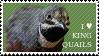 I love King Quails Stamp