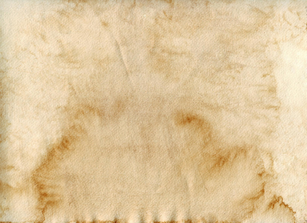 Coffee paper 3