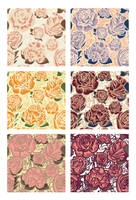Flowers Patterns by JuliaPainter