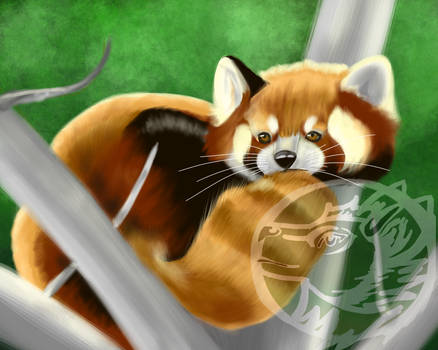 Little Red Fluff Panda Marked