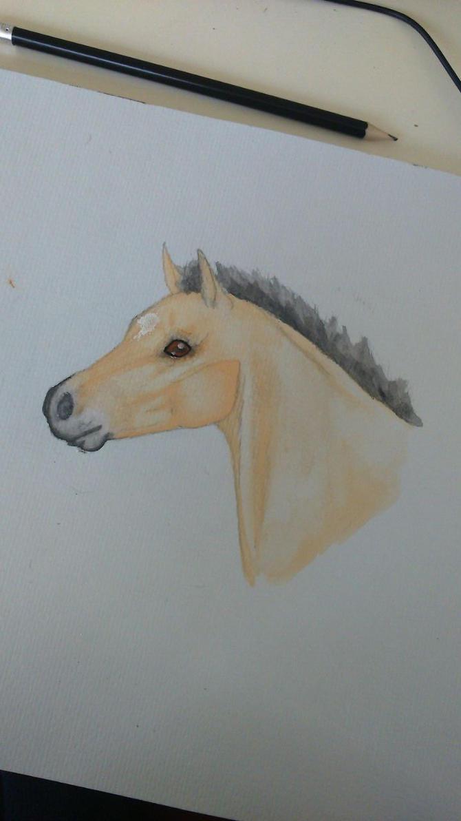 Foal in aquarel by Lumicenta