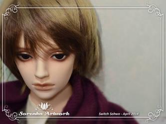 04.2014 Switch Sohwa 01 by SorenkaArtwork