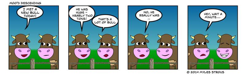 Bull session