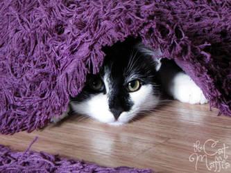 Hush, I'm hiding! Don't give me away! by RavenMontoya