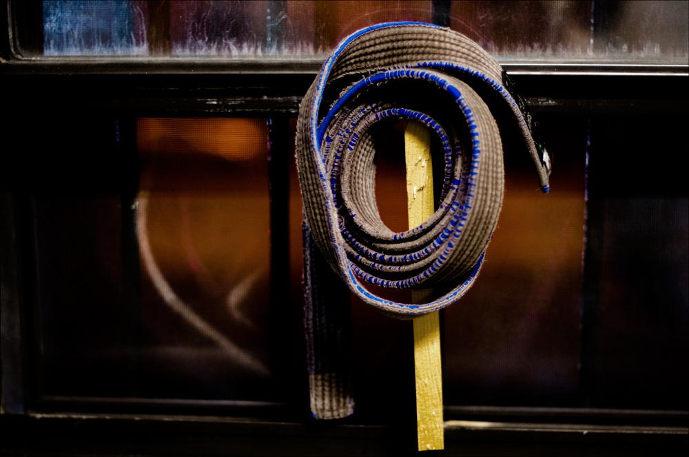 BJJ Brown Belt By Fayerman