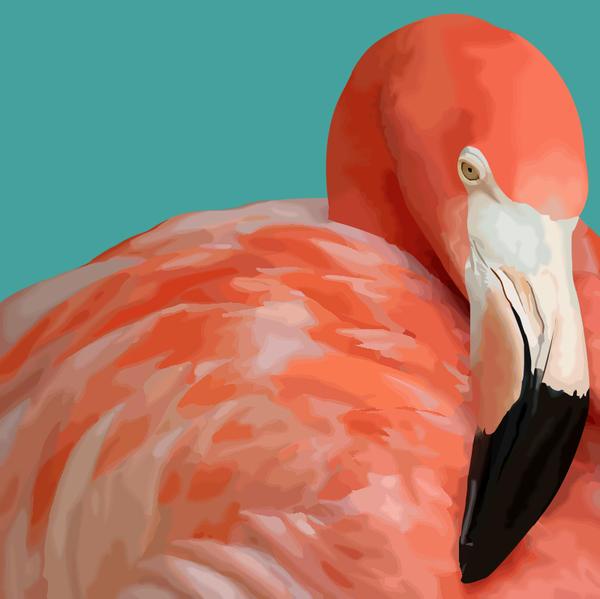 Flamingo Vexel by ElizabethParkin