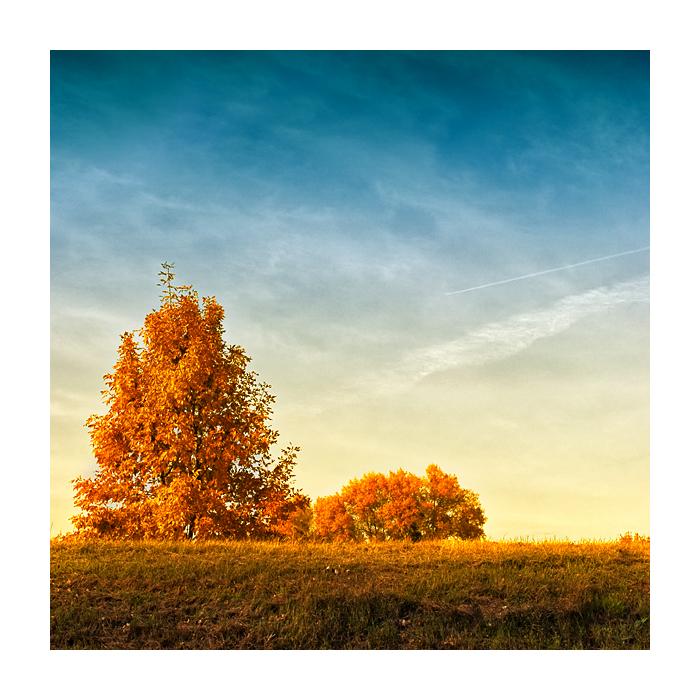 autumn by madazulu