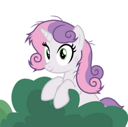 The Bushes Have Ponies