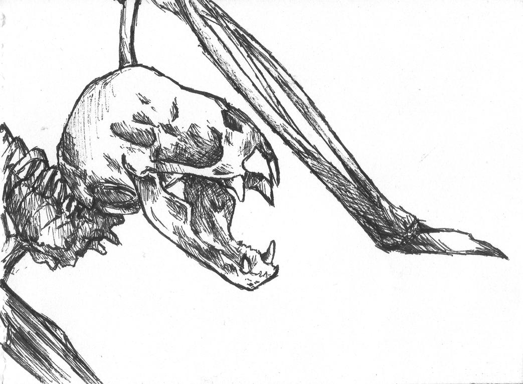 Bat skeleton drawing - photo#11