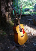 Redwood Bough Guitar Stand by ObscureStar