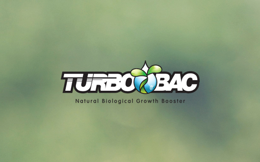 Turbobac Logotype by shell-x