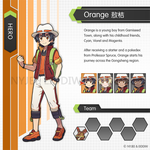 Trainer Orange by Nyjee