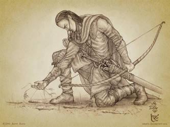 Beleg Strongbow by aautio