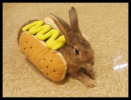 Halloween Bunnies: Jack