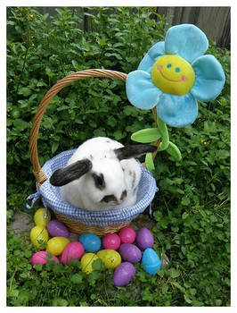 Easter Bunnies: Flower