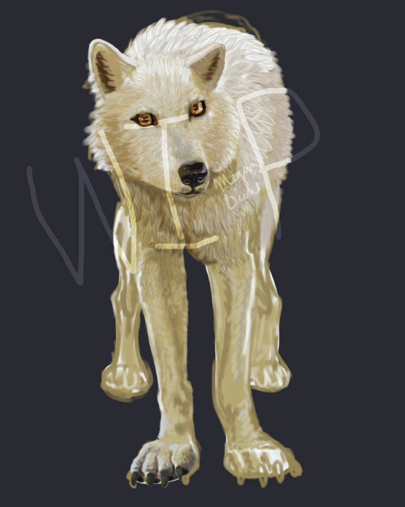 Wolf WIP by aviluff